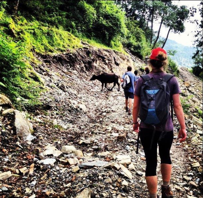 Mon hiking