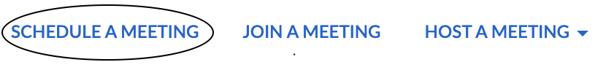 Schedule a Meeting Zoom Web Portal