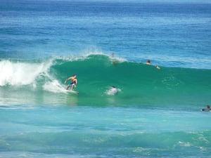 Gus surfing